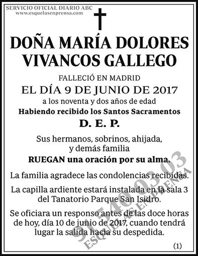 María Dolores Vivancos Gallego